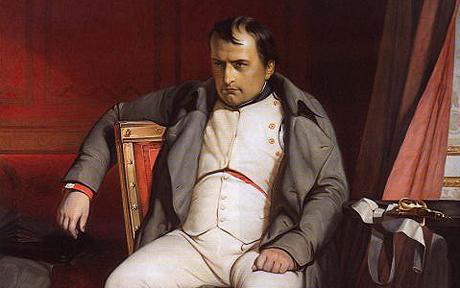 Napoleon Bonaparte Sitting